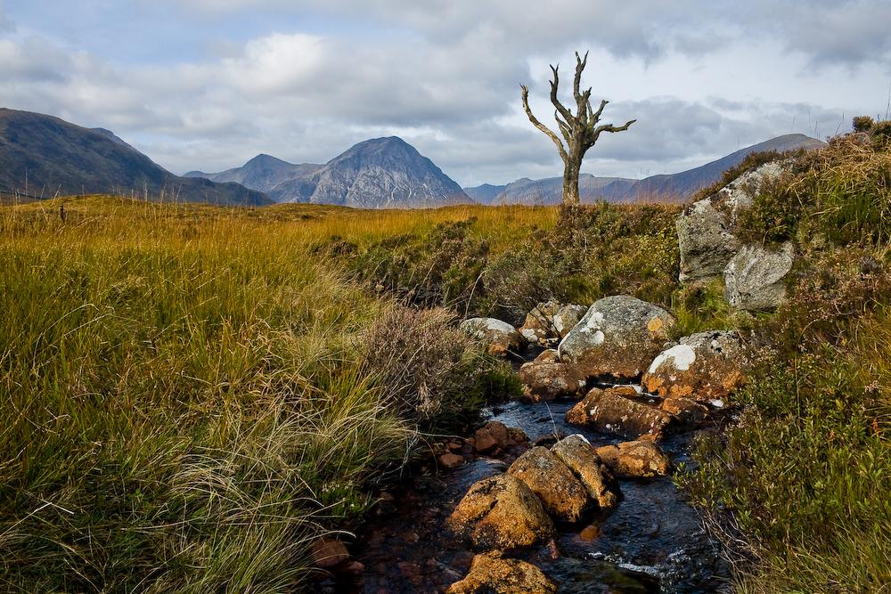 9. Rannoch Moor, típica landa de escocia. Autor, Pimhorvers