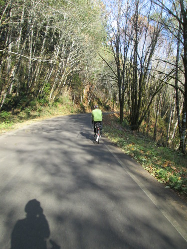 Climbing up from Alsea on South Fork Rd