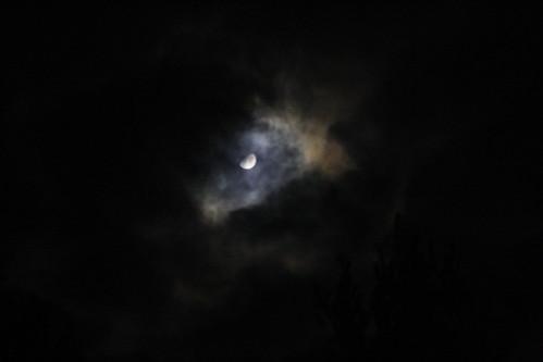 [225/365] Peek-a-Boo Moon