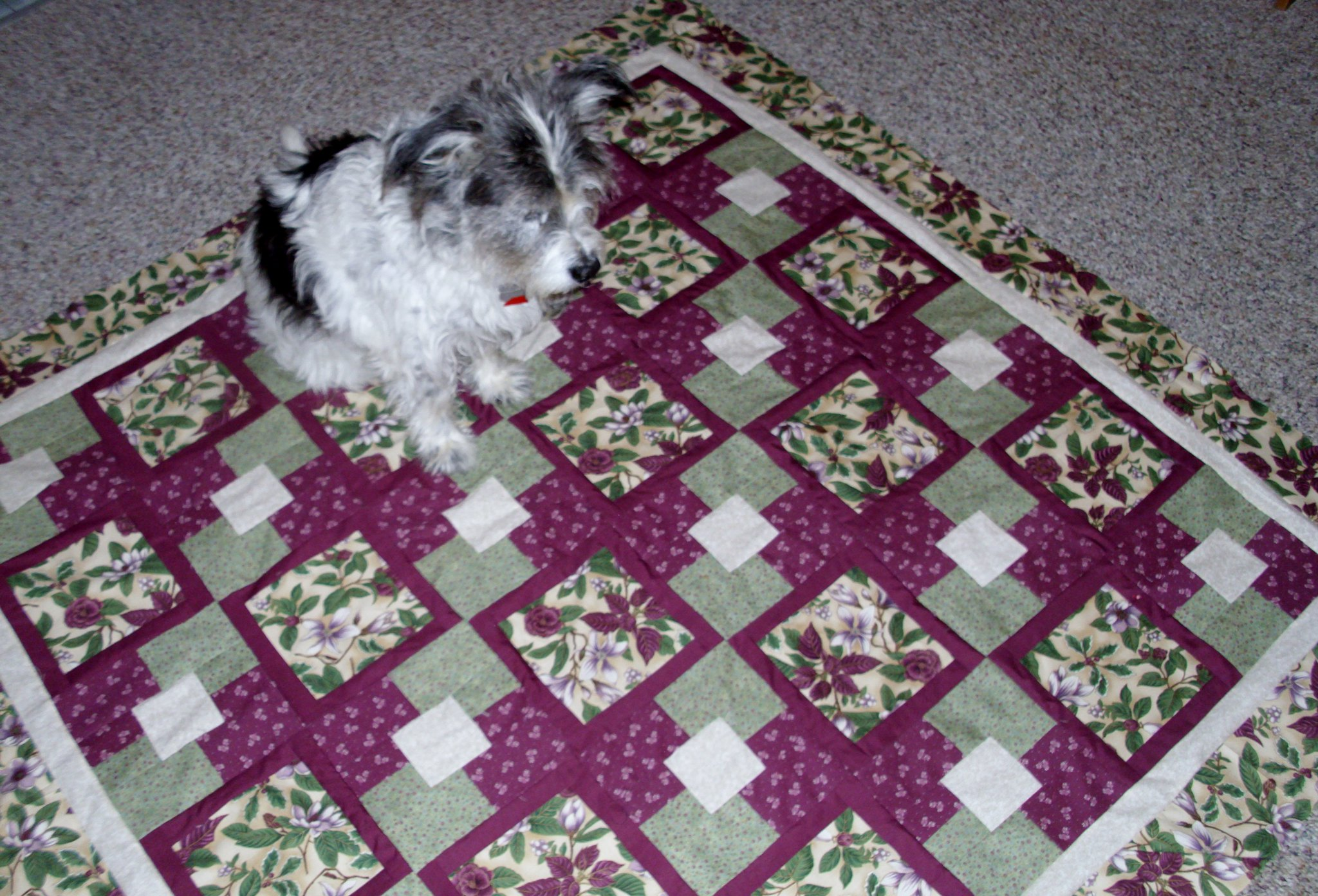 Five Yard Quilt Pattern By Mary Danielson At Easy