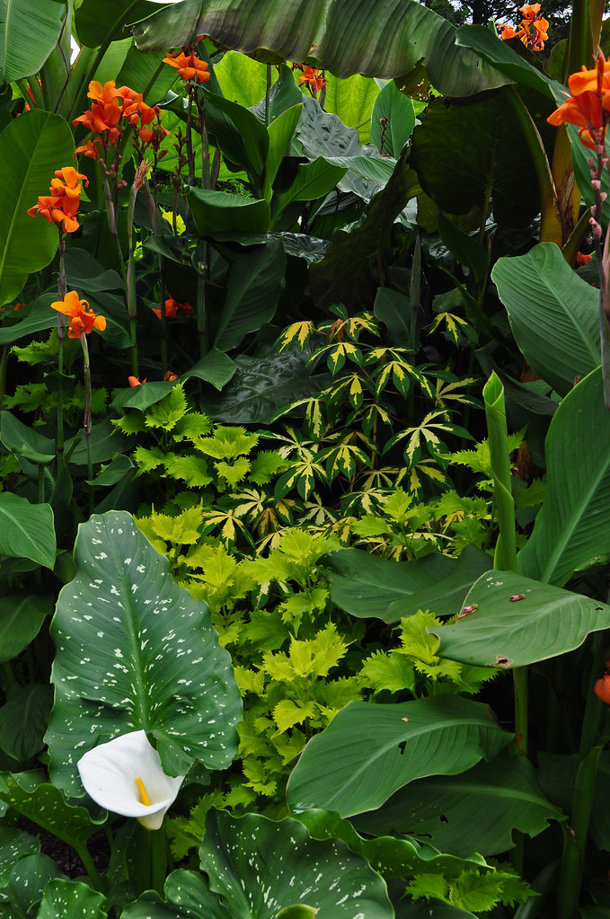 Student Exhibition Garden (5)
