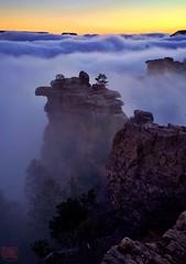 Dawn on the South Rim, over a sea of clouds...Mer de brouillard à l'aube