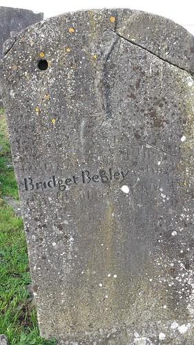 Bridget Begley