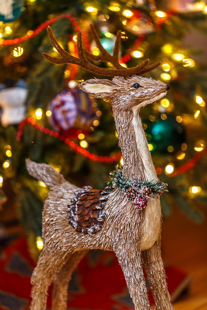 The Holiday Deer