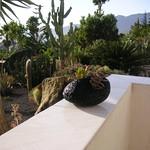 Ausblick von Casa Alina in den Garten