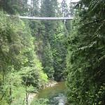 Capilano suspension bridge from afar