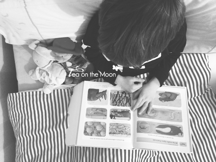 365 moments Tea on the moon 04