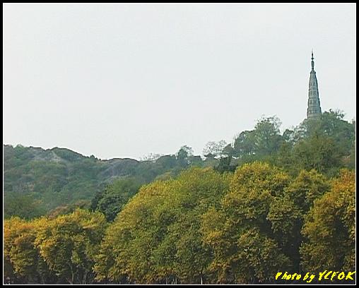 杭州 西湖 (其他景點) - 123 (從北山路湖畔看杭州地標 保淑塔)