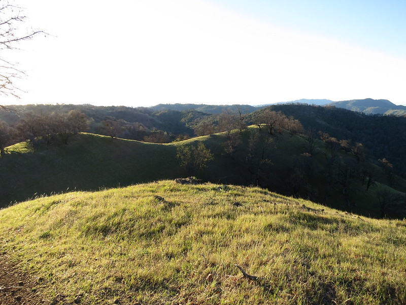 Early light over the hills in the Ohlone Regional Wilderness.