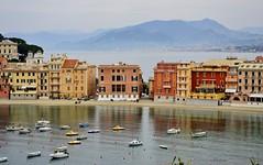 I ♥ Liguria ... Sestri Levante