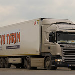 Scania R440 Streamline Highline / Asya Tarim (TR)
