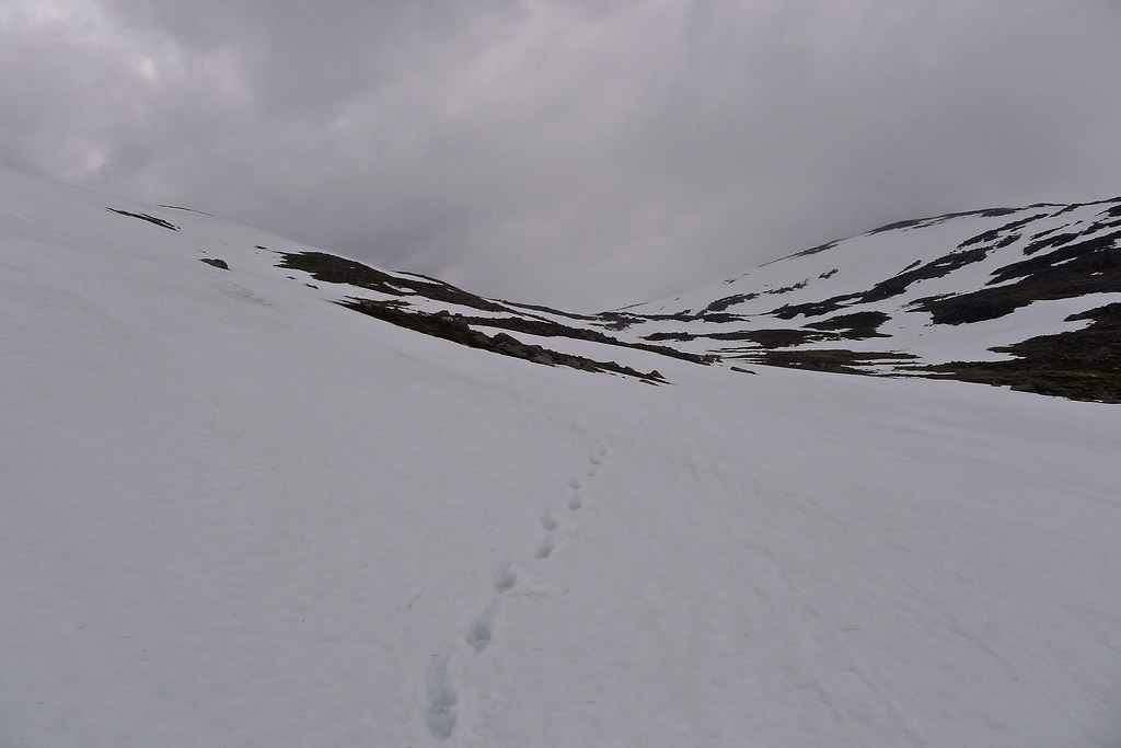 Snowy descent from Ben Macdui
