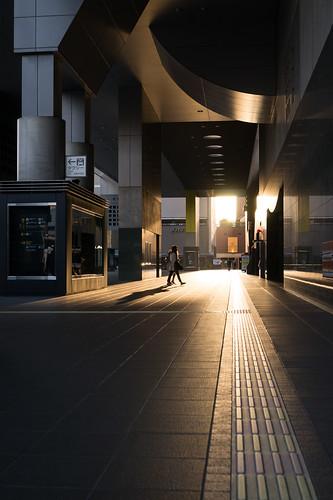 city urban sunrise kyoto 京都 日本 春 kyotostation 日出 日の出 京都駅 京都市 京都府 近畿地方 朝暘