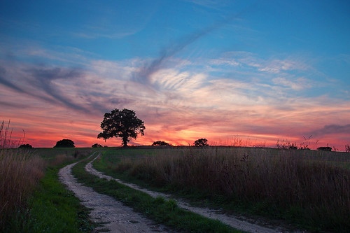 sunset sky sun tree field silhouette clouds glow path