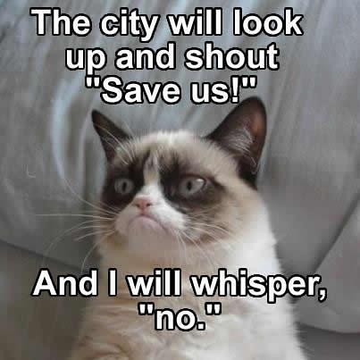 Grumpy cat whispers no