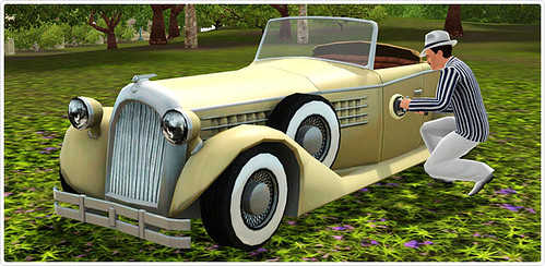 5_car_b_nl_car