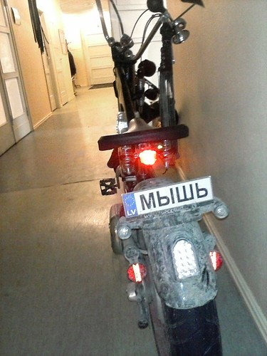 """A mouse"" - a number plate for a bike in our training where I work by aigarsbruvelis"