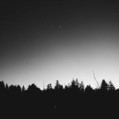 Minimalistic nature from last night.