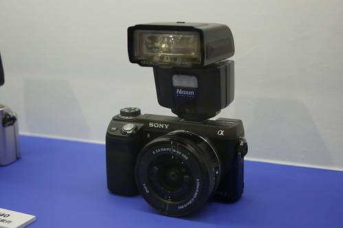 DSC05236.JPG