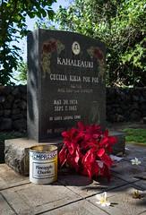 Cemetery - Hawaiian Style
