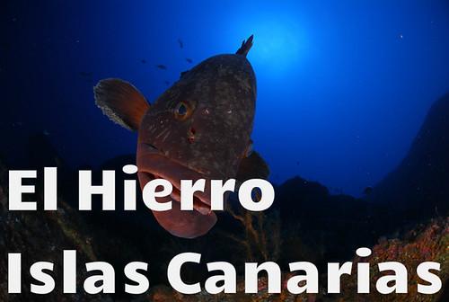Viaje buceo El Hierro