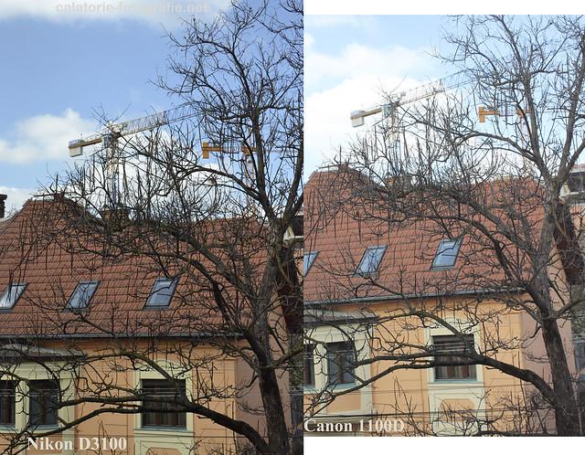 Canon 1100D vs Nikon D3100 - care să fie cel mai bun DSLR de buget redus? 13703961025_b888bb75ec_z