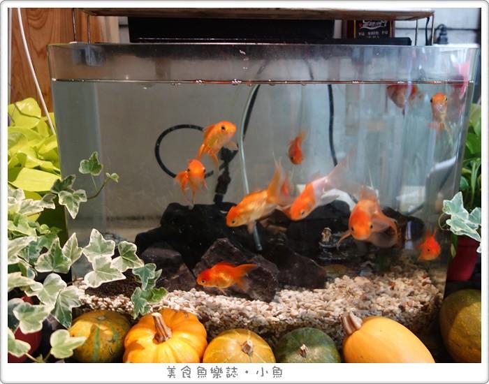 【台北大安】金魚日本料理