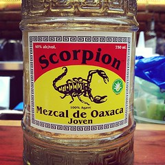 wow! with @voyagegourmand @wildgourmetyyc #mezcal cc @thiefen