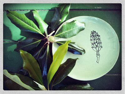 Magnolia Cone plate with branch...1369828919380 by Elizabeth's Pottery