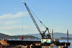Cranes, Floating Cranes & Derrick Barges