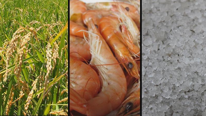 在地、安全的食材,成了布袋地區農、漁、鹽產業重新串連的成果,也創造了另一種兼顧環境、健康、文化等的幸福經濟。圖片來源:台灣環境資訊協會。