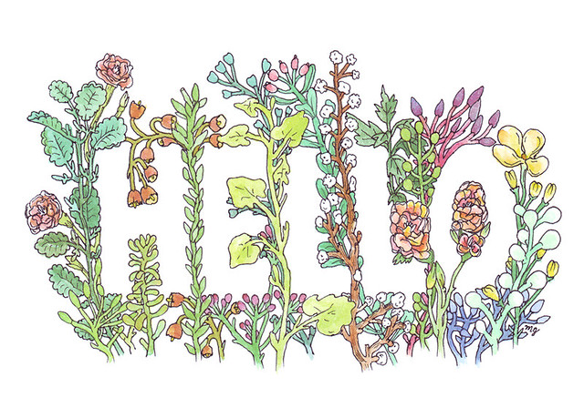 hello in flowers