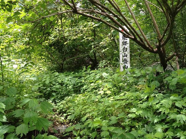 能郷白山登山口(能郷谷)
