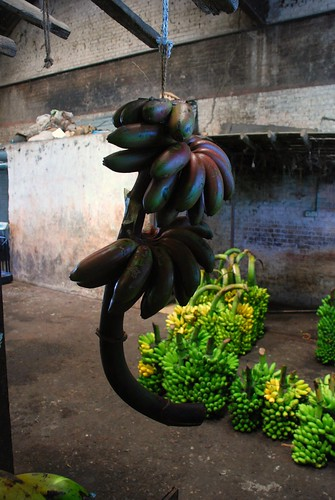 bananas 3, Colombo