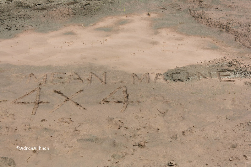 Xiphon Sun Kissed. 4x4 Mean Machines Club. - 10137024535 d89a114b87 c