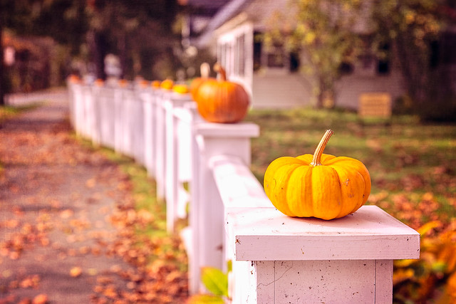 Pumpkin fence in Woodstock, Vermont