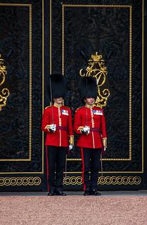 Cérémonie de la relève de la garde à Buckingham Palace - Soldats en détail