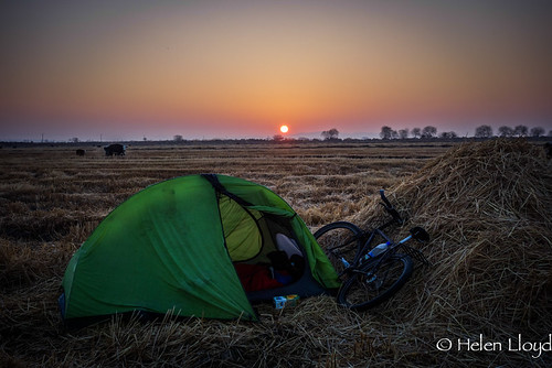 Camping in field by Amu Darya river