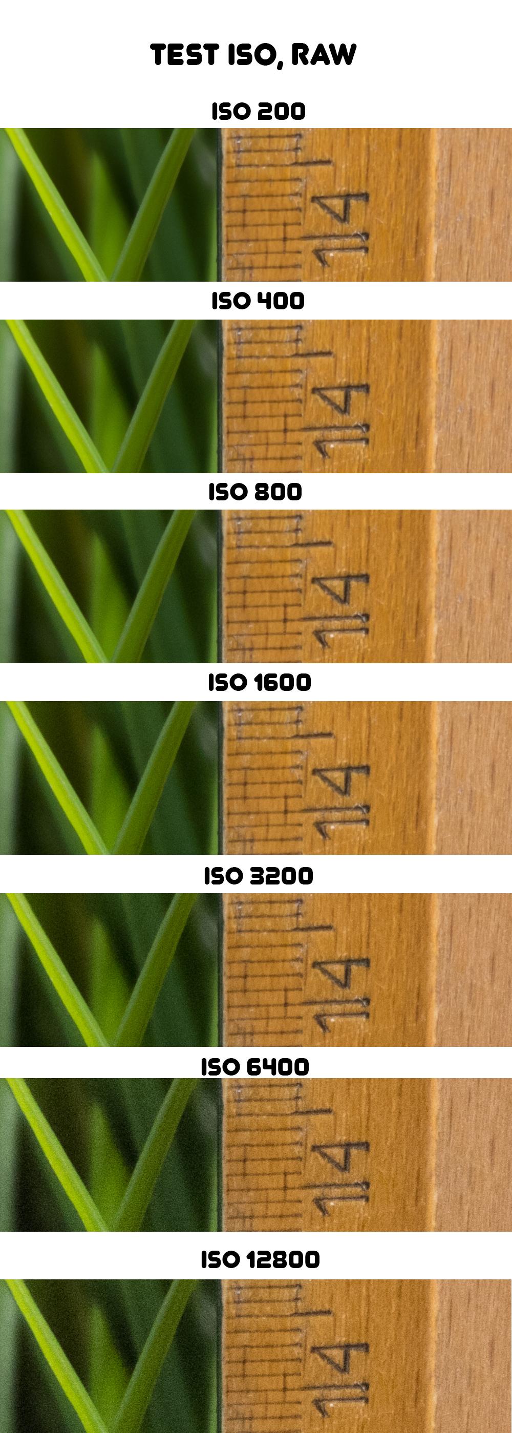 Fujifilm X-M1 - ISO, RAW