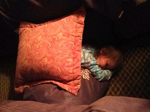 Davis made a tent