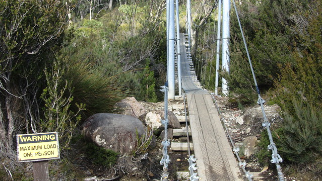 Day 6: Narcissus River suspension bridge
