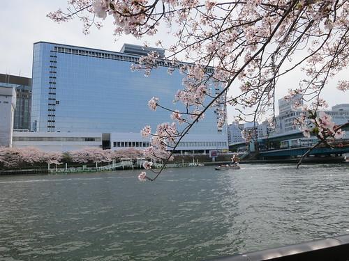 OMMビルと桜