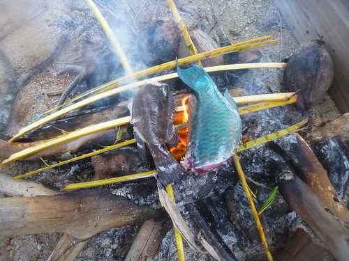 Fish on the beach fire