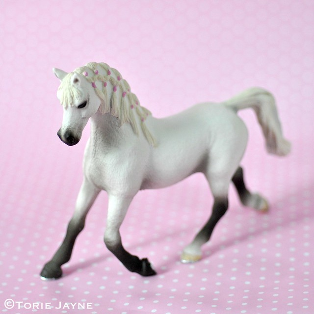 pony for cake