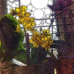 More #funwithapps #percolater #yellow