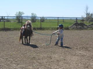 Horse Lessons 10Jun13 (4)