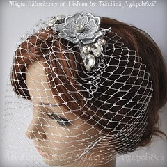#birdcage #veil #bride #wedding #silver #venicelace #venise #swarovski #flower #embroidery #planning #engagment headband #comb #headpiece #barrette  #europe #artist