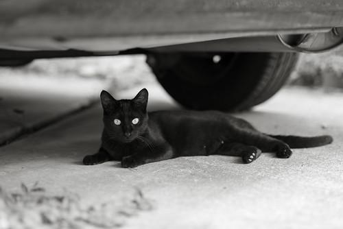 CAT 2 20130715