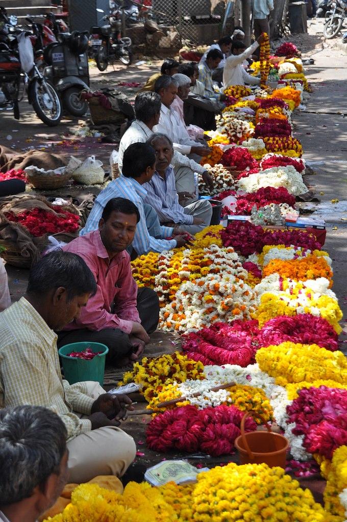 India_Trip_386