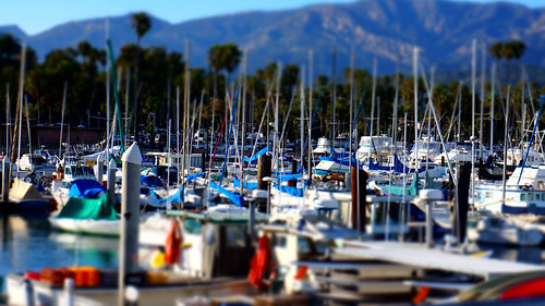 Nautical Cluster by Damian Gadal